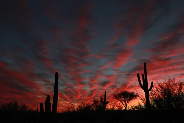 Saguaro Buttes Sunset